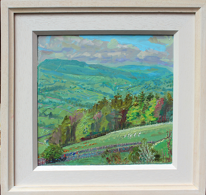 Blackheaded gulls, walkers, daffodills, and distant Wensleydale