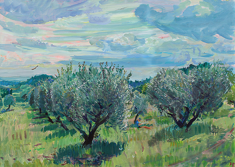 'OLIVES CAUGHT IN SUDDEN SPRING SUNLIGHT: VAUCLUSE'