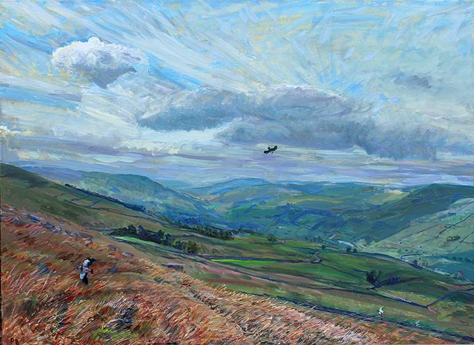 'PLOVERS BACK: MAY IN UPPER WENSLEYDALE'