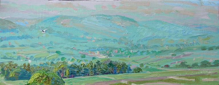 'MAY DAWN OVER ASKRIGG - WITH BLACK-HEADED GULL'