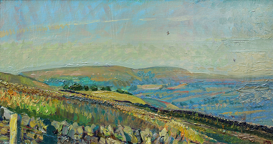 'SUMMER EVENING SWALLOWS: PENHILL BEYOND'