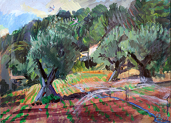 'ANCIENT OLIVES IN A TOURRETTES-SUR-LOUP VIOLET FIELD'