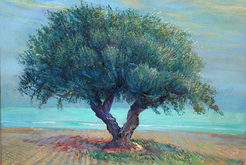 'GREEN DECEMBER SEA AND OLIVE: NEAR MAHDIA'