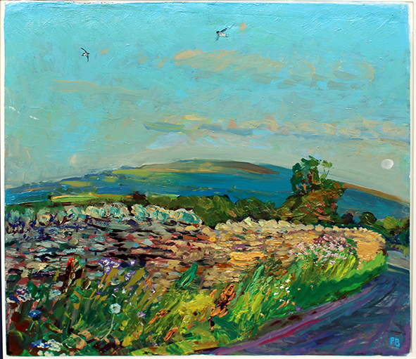 'MEADOW CRANESBILL AT THORNTON RUST, EVENING LIGHT ON PENHILL'