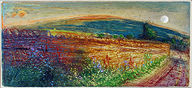 'MEADOW CRANESBILL WITH PENHILL BEYOND; WENSLEYDALE'