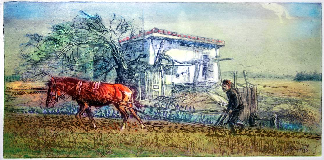 ''PLOUGHING IN TURKEY''