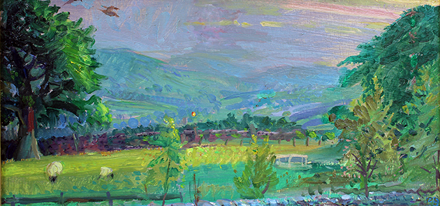 'WOODCOCK FLY-PAST EACH JUNE SUNSET, W'DALE'